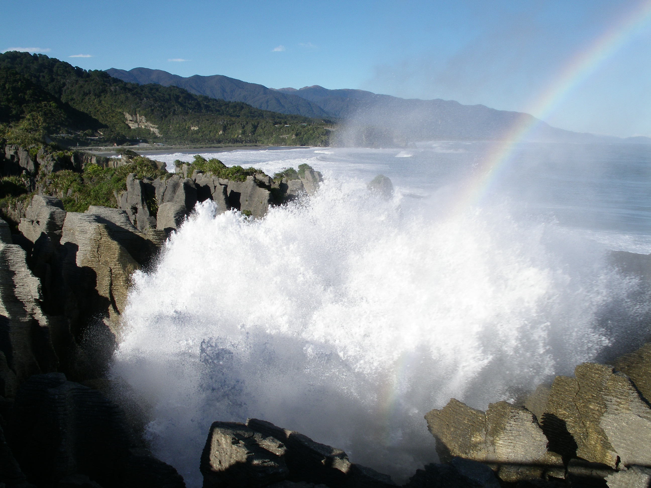 40 Million Sheep Punakaiki Pancake Rocks and Blowholes